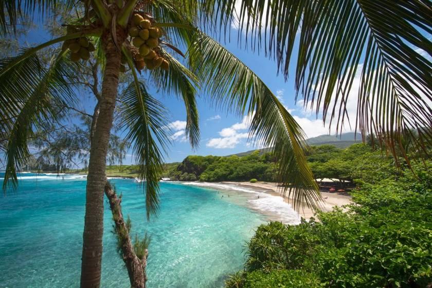 Как и почему Гавайи стали американскими